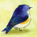 the takabird